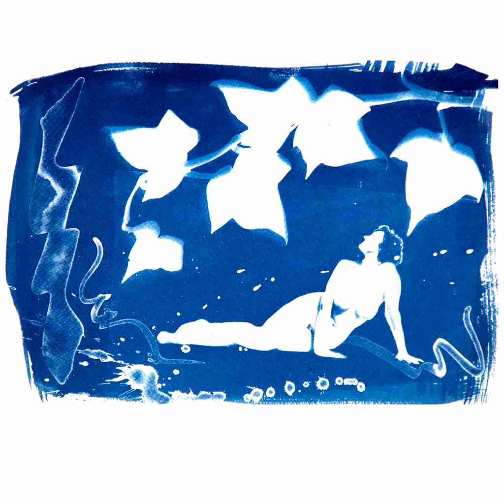 nude with ivy, cyanotype by Emma Plunkett art