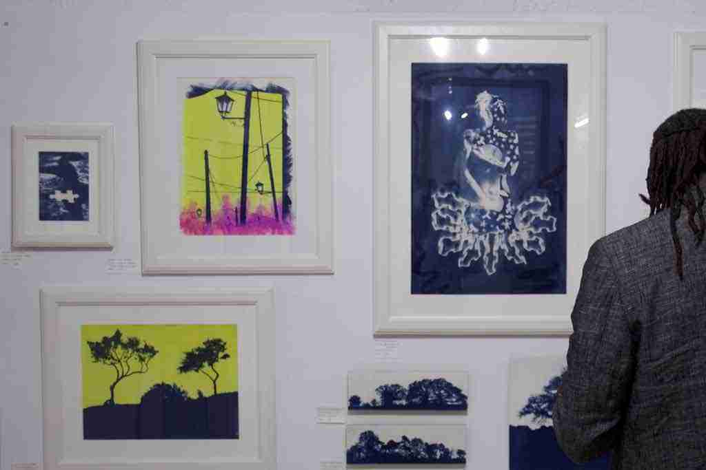 art exhibition of cyanotypes