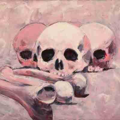 Pink skulls by Emma Plunkett