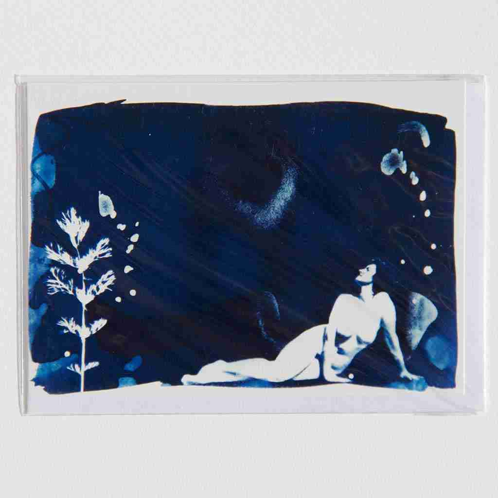 cyanotype print with a nude and piece of foliage