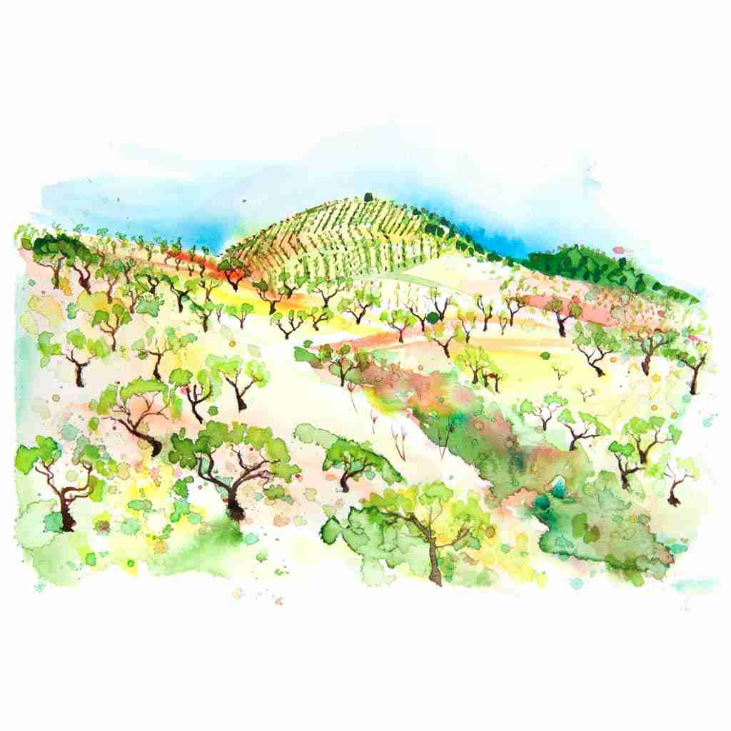 Torvizcón landscape painted in watercolours