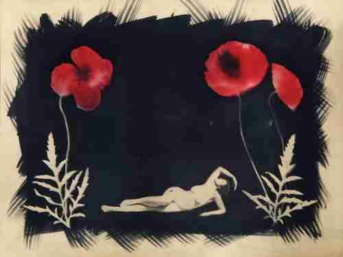 Coffee toned cyanotype with poppies and nude