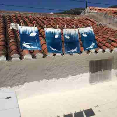 cyanotypes drying in the Andalusian sunshine