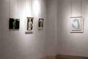 Jardin Nazari, sala de exposiciones, arte de Emma Plunkett y Gareth Lister